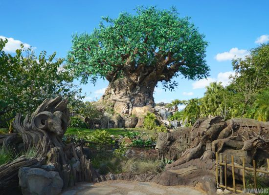 Disney Animal Kingdom lança seu novo show: The Jungle Book: Alive With Magic, venha assistir ao vídeo